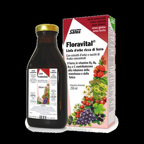 Floradix® 250 ml Integratori di ferro Salus