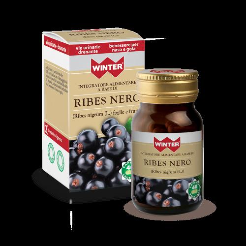 Ribes Nero Benessere vie urinarie Winter