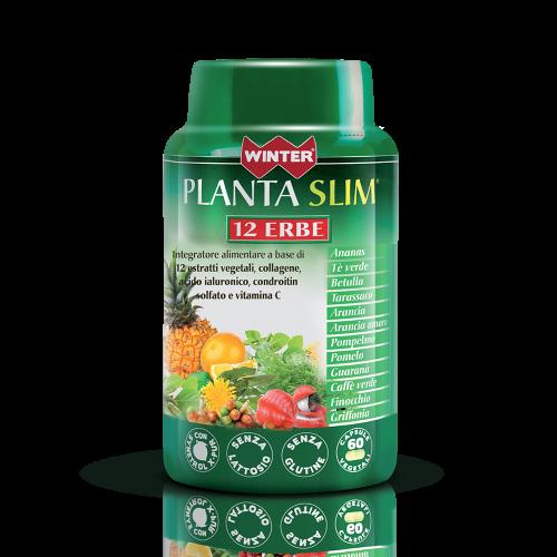 Planta Slim 12 Erbe Depurazione Winter